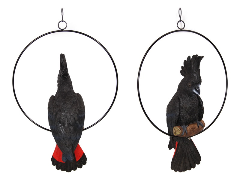 43CM BLACK COCKATOO IN 30CM RING