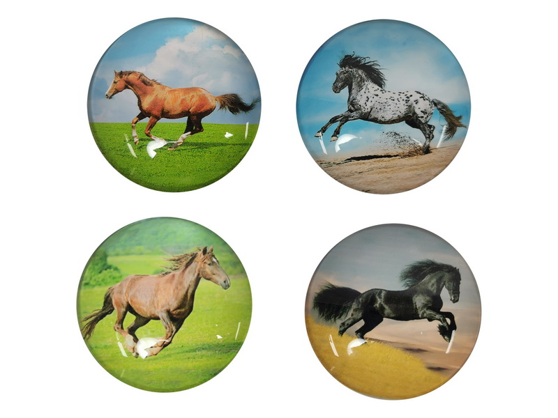 5CM GLASS HORSE MAGNETS 4 ASSTD