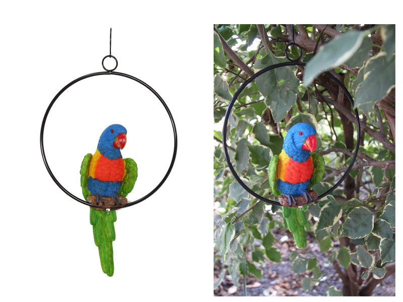 20CM REALISTIC PARROT IN RING (KNOCK DOWN)